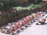 Honda Monkey Collection